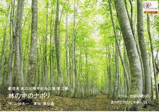 林の中のナポリ チラシ画像.jpg