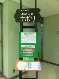 SH3J0332.jpg